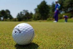 golf-3216250.jpg