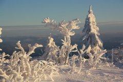20171001-lusen-winter-winterwald-schnee-claudia_schmidt-4.jpg